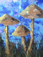 funky mushrooms by anuvys
