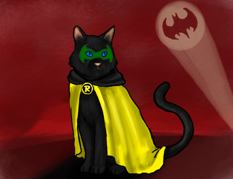 Damian Cat by R-Newman