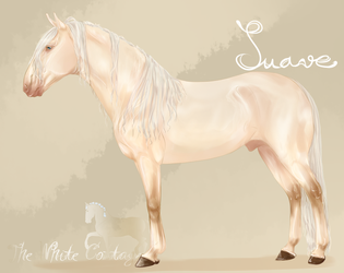 TWC Suave by The-White-Cottage