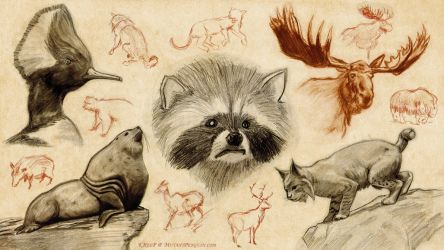 Animal Drawings by MutantPenguin