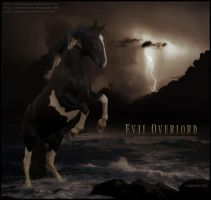 evil overlord by glitchHP