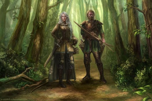 Dove and Florin Falconhand Commission by x-Celebril-x