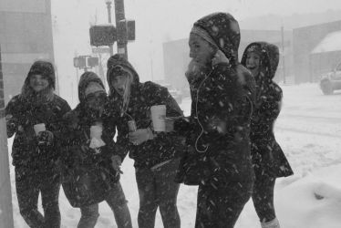 Snow Beauties In January Blizzard, 2018 by Miss-Tbones