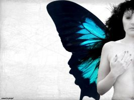 Fragility of her wings by amalie