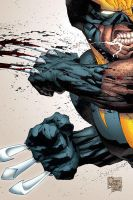 Wolverine: Colors by garstu