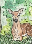 A Sound ACEO trade- by AstaraBriarart