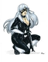 Black Cat by selewyn
