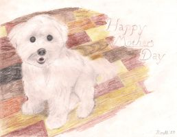 Maltese Mother's Day by GoldenFoxDA