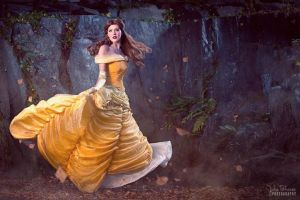 Beauty and the Beast by fiatzio