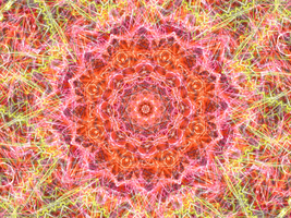 Fractal Thingy #2 - Lightning Rose by Spaztique