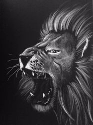 Lion by BethanyDil