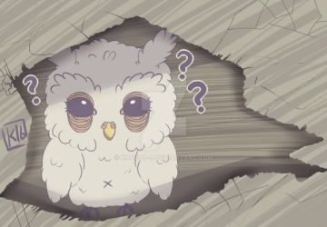 Lost owl by kurodo-j