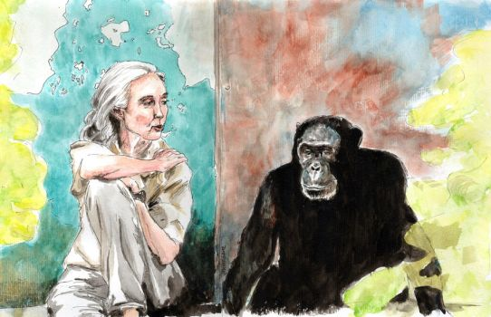 Dr Jane Goodall 2 by VickyTico