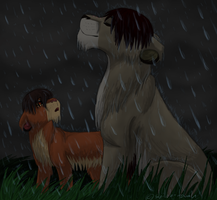 Out in the Rain by Shiloh-Tovah
