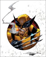 Wolvie by San Colors by SplashColors