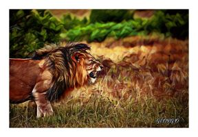 Lion - King Of The Jungle  by BlackIndian36