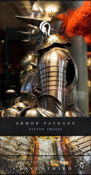 Package - Armor - 1 by resurgere