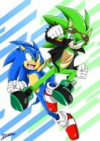 Contest: Sonic vs Scourge by ss2sonic