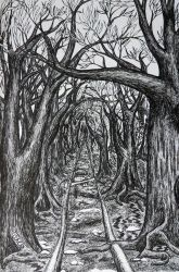 Tunnel of Trees by Jacofnight