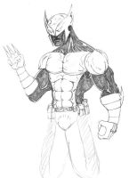 Shadowhawk by ntholden