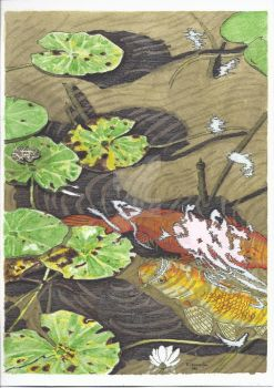 Koi-pond by barbcast
