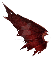 RED DRAGON WING by Aim4Beauty
