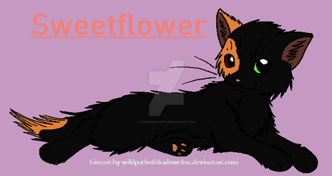 Sweetflower - Request for X-Raywhisker by Thunderstar711