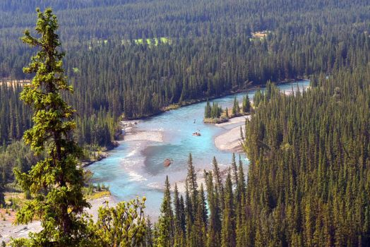 Bow River 1 - Banff, Canada by wildplaces