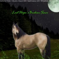 LastHope'sBrokenSave by wsl30horselover10
