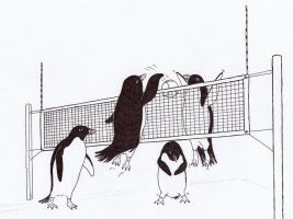 Beach volley, with penguins, that is. by Jalipuchi