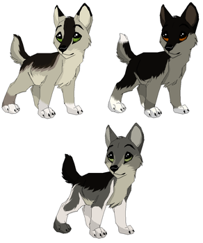 Pups for Mimmiley Contest Winner by 100percentWOLF-LOVER