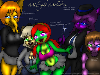 Midnight Melodies by zachthehedgehog97-2