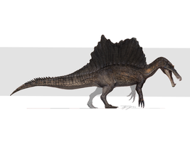 Reimagined spino by Tapwing