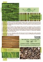 Bamboo Workshop Flyer by grapple-media