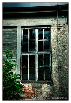 Window to the Past by Vipallica