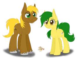Earth Ponies. CM by UniSoLeiL