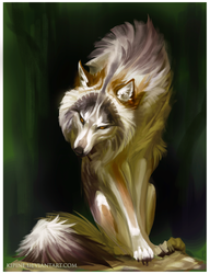 Wolf by Kipine