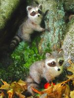 Needle Felted Raccoons by HStiLeS