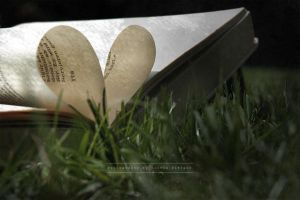 Love for Books by dareme