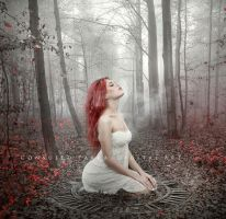 Soul of Forest by Consuelo-Parra