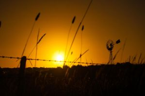 Country Sunset by daniellepowell82