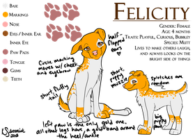 Felicity Ref Sheet by kaleidoscopial