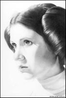 Leia- Countdown to Victory by MJasonReed