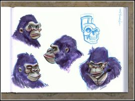 Gorilla Head Sketches by Cre8tivemarks
