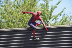 Spooderman  by ringette-and-riding