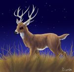 Oh deer... by Icoria