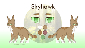 OTA Payment- Skyhawk Ref Sheet by Smileyme2