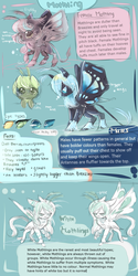 Mothling Species (MLP) by AquaGalaxy