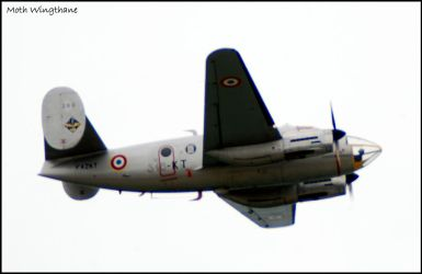 Dassault Flamant by Moth-Wingthane