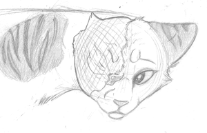 Brightheart Sketch by The-Skykian-Archives